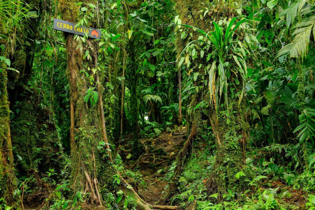 Costa Rica - Cerro Chato
