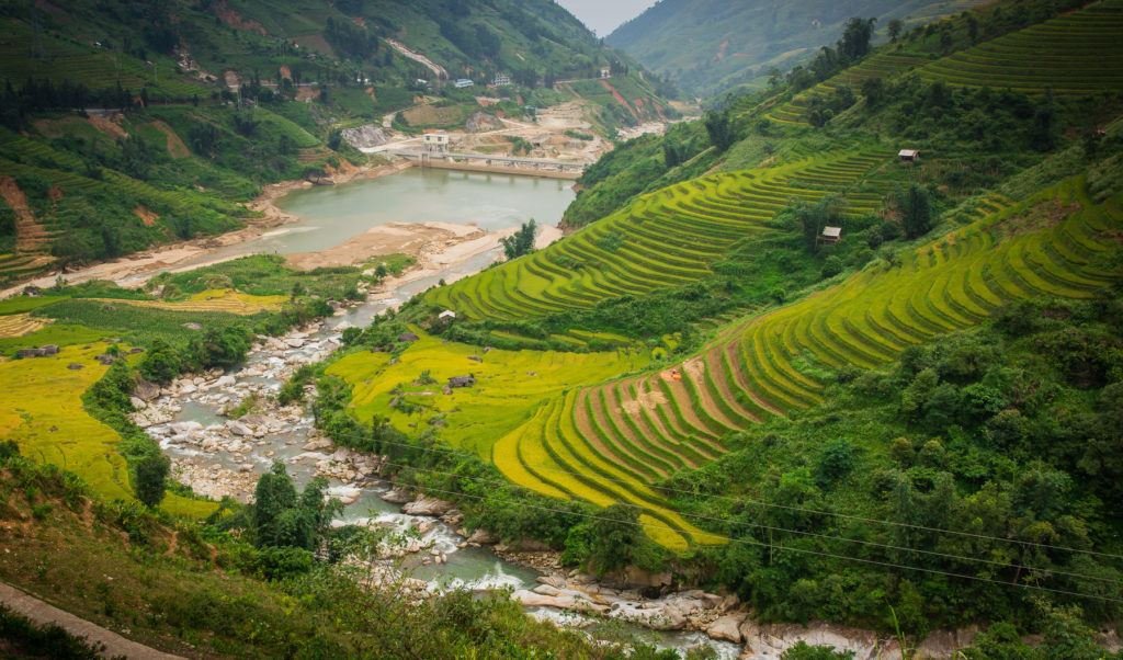 Sapa rijstvelden, Vietnam