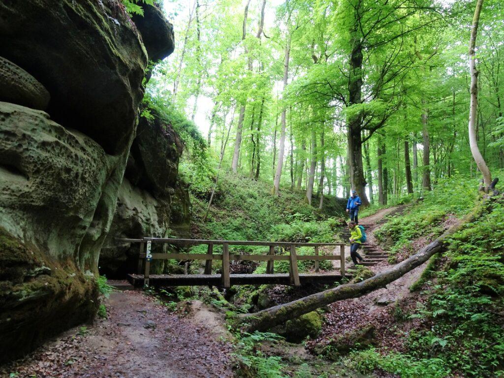 Sprookjesachtige rotsformaties in Klein Zwitserland